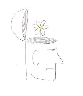 Daisy Brain